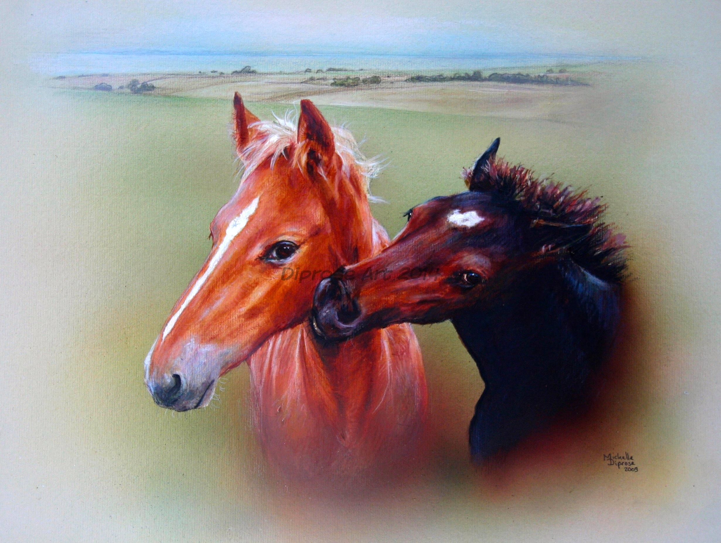 Acrylics on board - approx A3 - horse portraits - I was really pleased when I was asked to paint these foals as I usually am asked to paint grown-ups!  They looked so naughty and cheeky, adorable.