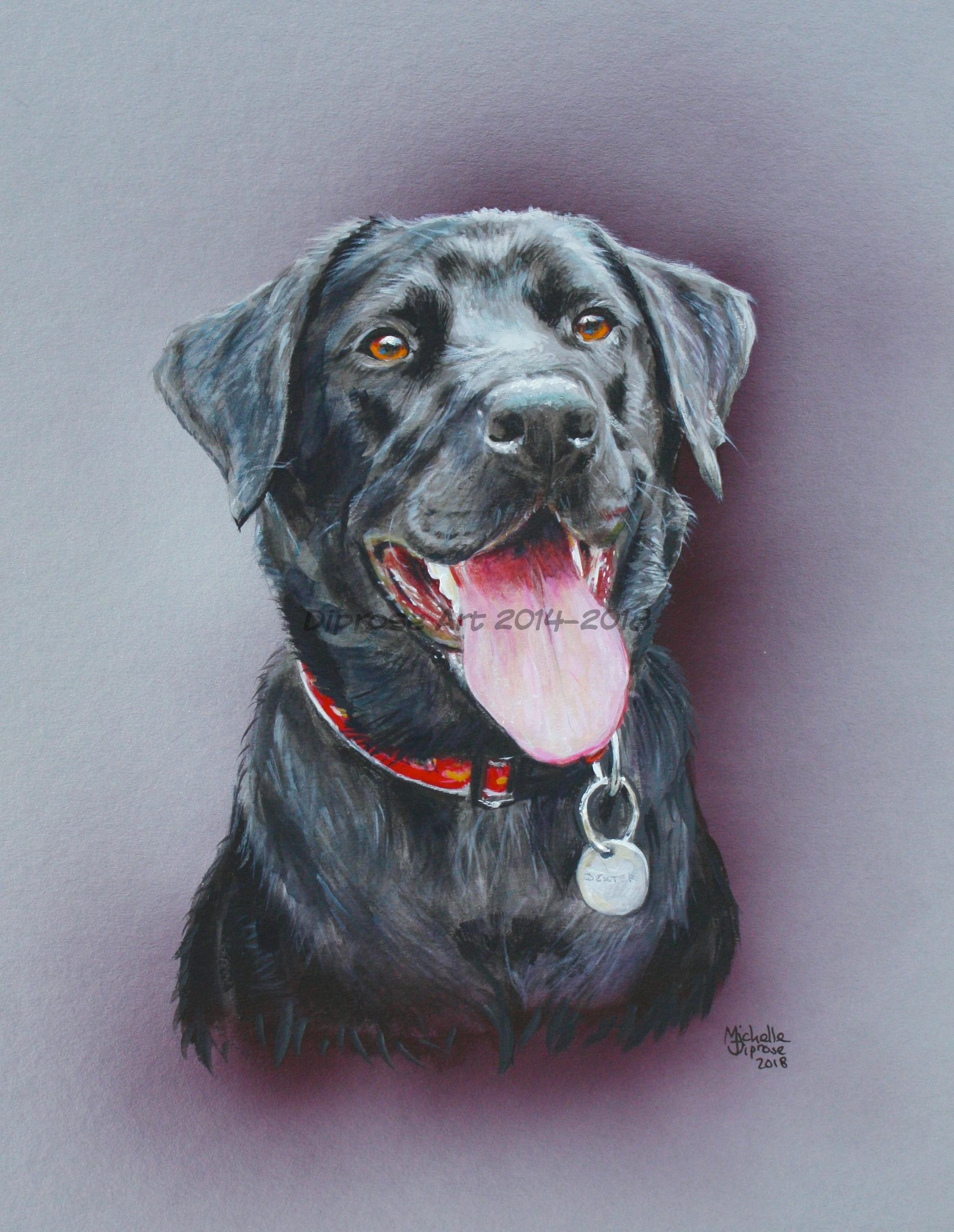 bd023373a72c Approx A4 acrylics pet portrait - this is Dexter and he really is a joyful  chap